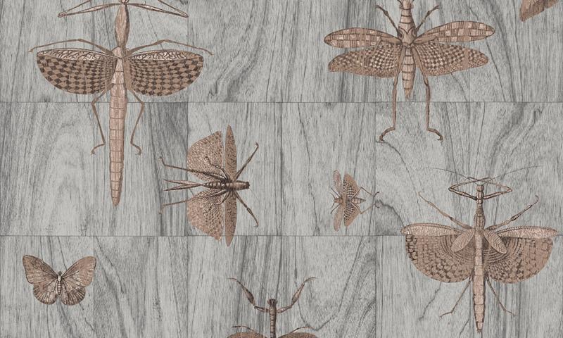 Arte Ligna Behang 42000 Hout/Insecten/Wings/Exclusief Wandtextiel