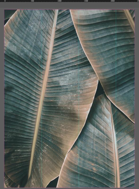 AS Creation Designwalls Fotobehang DD118562 Banana Leaves 2/Bananen Bladeren