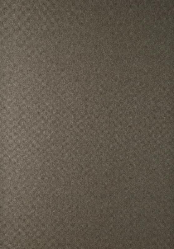 Hookedonwalls Jungle Jive Behang 21553 Uni/Tweed/Bruin