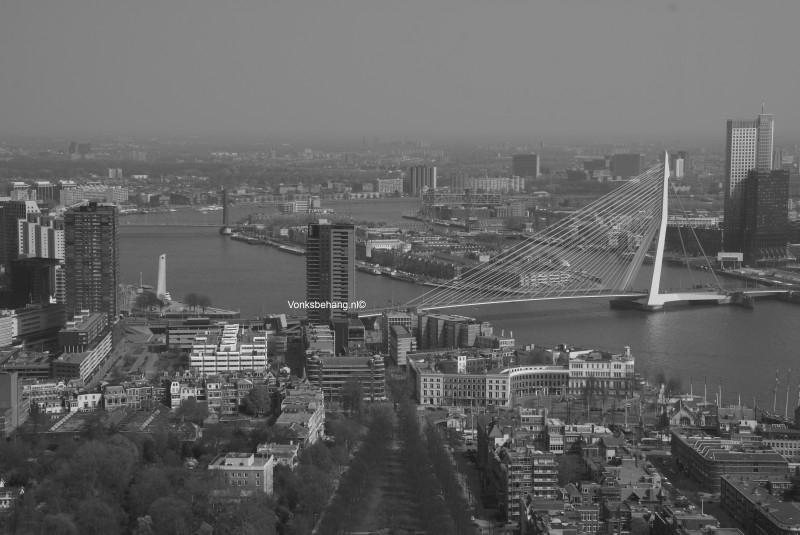 Fotobehang. Rotterdam-Erasmusbrug-grijstint