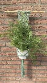 Inspiratie Plantenhanger 3