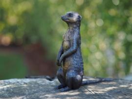 Stokstaartje meerkat brons beeldje