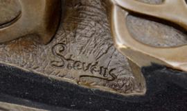 Steampunk bronzen schedel