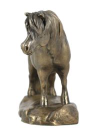 Shetlandpony brons shetlander beeld