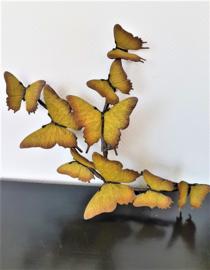 Negen bronzen gele vlinders op tak