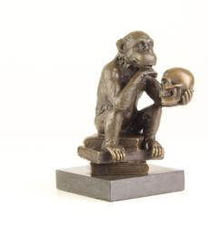Bronzen beeld aap met mensenschedel