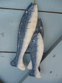 Set vissen , blauw/wit
