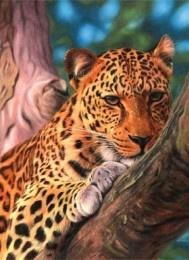 Schilderen op nummer luipaard