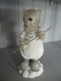 Leuke ijsbeer