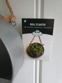 Muur plantenbak 20 cm.
