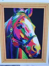 Schilderen op nummer, paard
