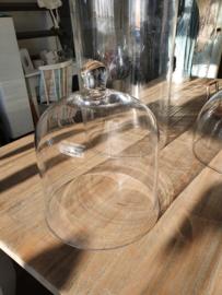 Glazen stolp met knop