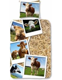 Dekbedovertrek koeien