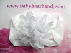 Brede  witte nylon baby haarband met chiffon toef.