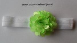 Voor de allerkleinste wit haarbandje met groen rozet.