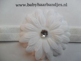 Smalle witte baby haarband met witte bloem.