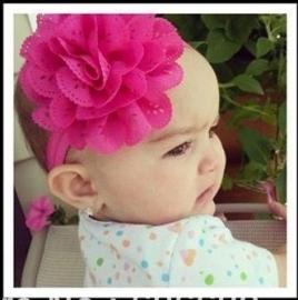 Fuchsia baby haarband met rozet.