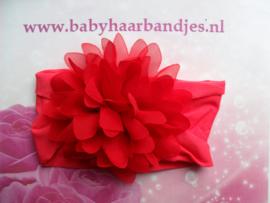 Brede rode nylon baby haarband met  chiffon toef.