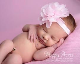 Smalle roze baby haarband met roze toef.