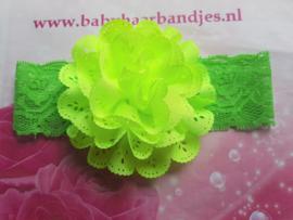 Kanten groene baby haarband met kanten toef.