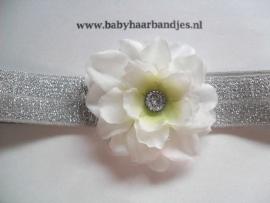 Voor de allerkleinste zilver haarbandje met wit bloemetje.