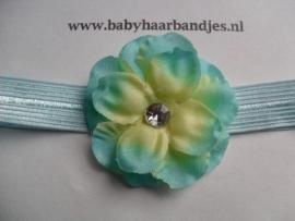 Voor de allerkleinste licht blauw haarbandje met bloem.