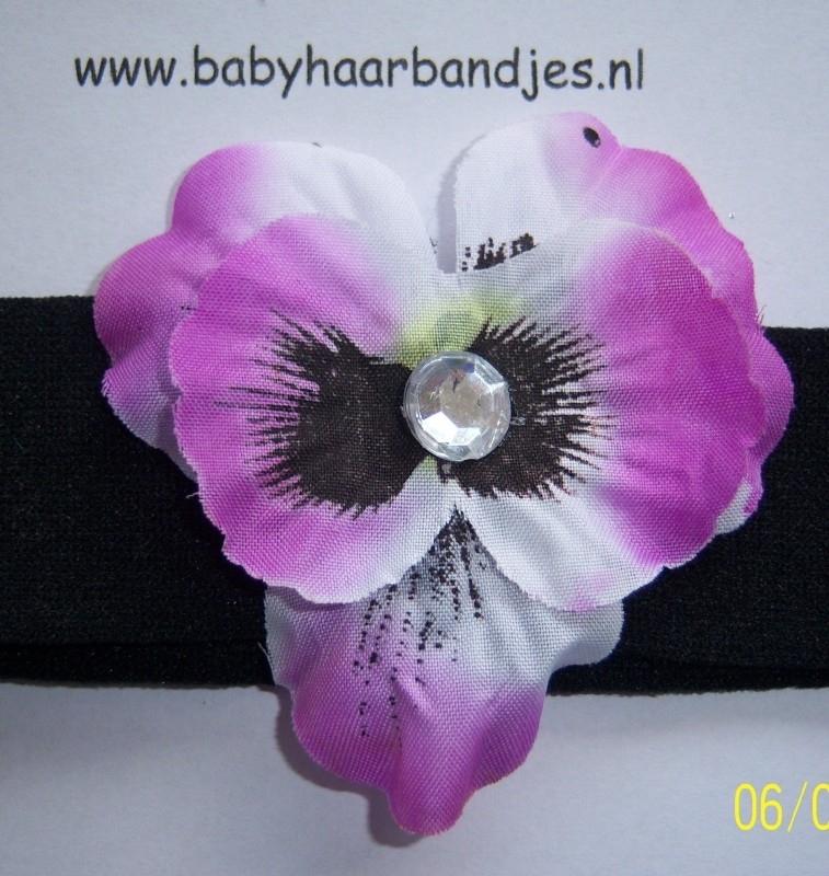 Zwarte babyhaarband met viooltje.(paars)