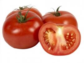Tomaten - Tomates