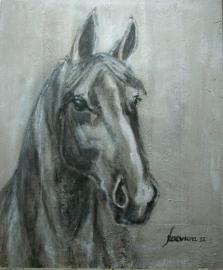 Paardenschilderij 'Sharif'