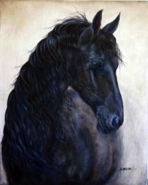 Paardenschilderij 'Sierda'