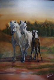 Paardenschilderij 'Camarque'
