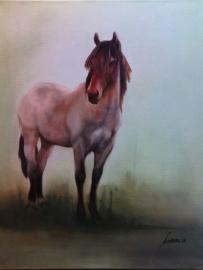Paardenschilderij 'KWPN x Zeeland Horse'