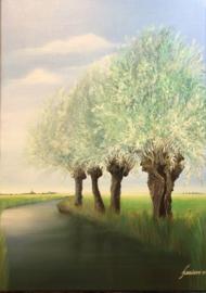 Schilderij Landschap met knotwilgen