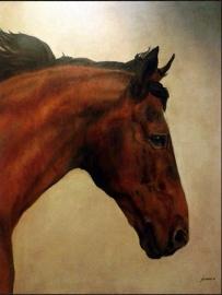 Paardenschilderij 'Treasure Z'
