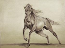 Paardenschilderij 'Desert Storm'