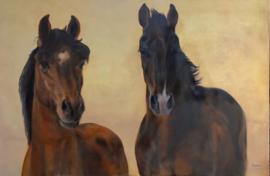 Paardenschilderij 'Disaronno en Cool Spirit'