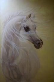Paardenschilderij 'Hlayyil  Ramadan'