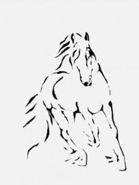Design Paardentrailer / Horsetruck