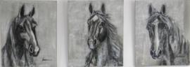 Paardenschilderij 'Drieluik Sharif Bailey Rico'