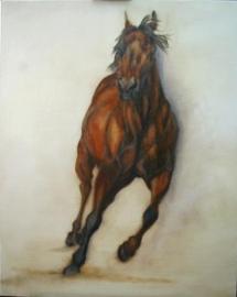 Paardenschilderij 'Quarterhorse Fancy'
