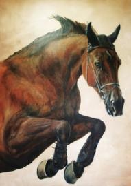 Paardenschilderij 'Grande Dame'