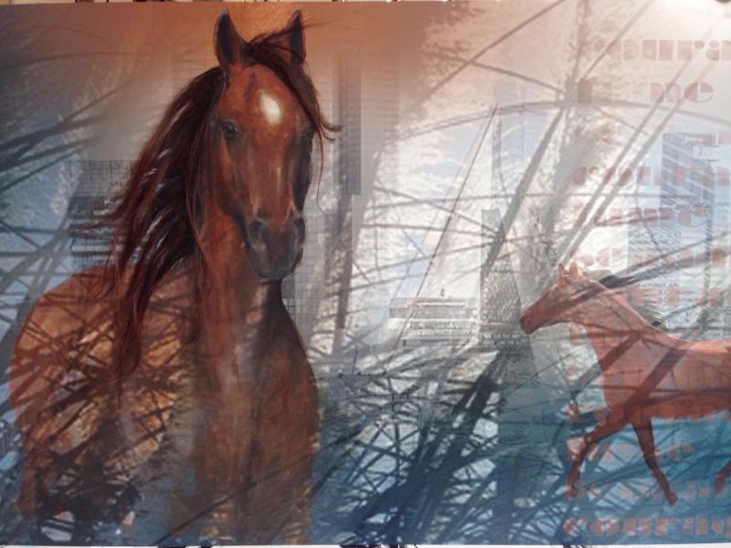 Paardenschilderij laten maken met echt paardenhaar