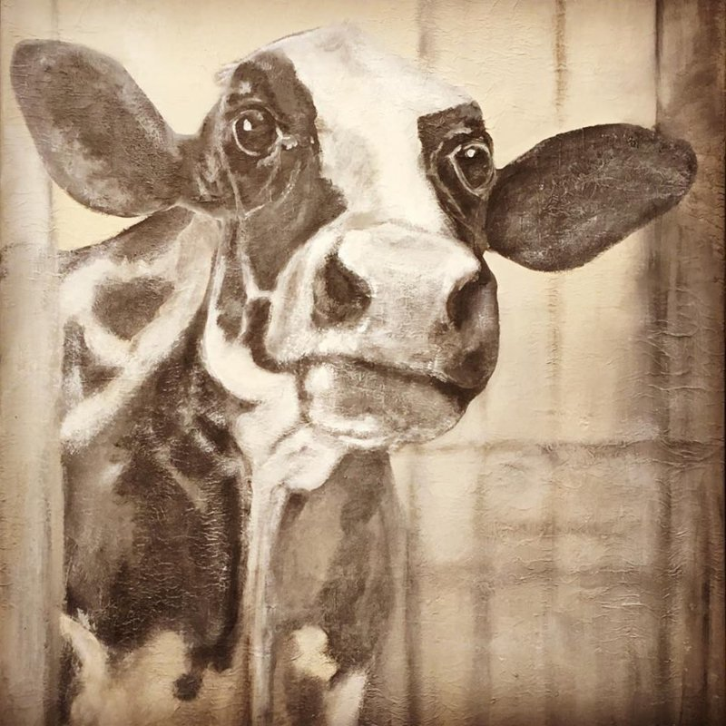 Frida 7725 koeienschilderij