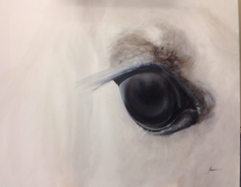 'Vision'