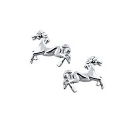 zilveren oorsteker paard