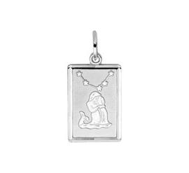 zilveren sterrenbeeld waterman
