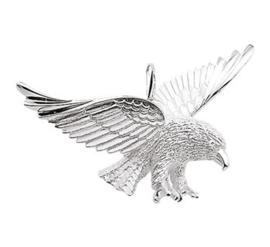bedel adelaar