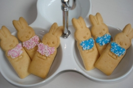 Geboorte koekjes (Nijntje)