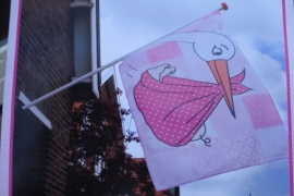 Vlag Roze