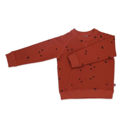 Froy and Dind * WINTER 2019 * Sweater Ilias triangle fox